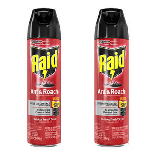 Raid Ant & Roach Outdoor Fresh 2 Pack (496g per Pack)