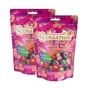 Nature's Sensation Dried Mixed Berries 2 Pack (170g per Pack)